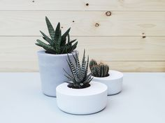 Beton Blumentopf im 3er-Set für Deine Sukkulenten / concrete flower pots for your succulents by Industrial Republic via DaWanda.com