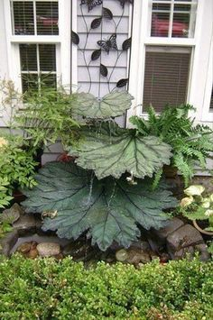 How to Make Concrete Leaves – Natural Decor for Your Garden