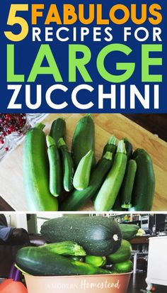 If you're growing zucchini it's likely you've had a few giant zucchini show up. With these 5 delicious recipes for oversized zucchini you'll never wonder what to do with large zucchini again! Large Zucchini Recipes, Summer Squash Recipes, Zuchinni Recipes, Vegetable Recipes, Vegetarian Recipes, Vegetarian Options, Healthy Options, Summer Recipes, Side Recipes