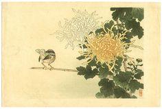 Kono Bairei Flower and Bird Print 1899