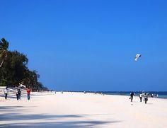 Safari i Lake Nakuru og Masai Mara. Her besøker vi to av de absolutt beste nasjonalparkene i Kenya, som også ligger godt i forhold til hverandre.  Ferien avslutter vi i Mombasa på badeferie, der vi kan nyte de hvite sandstrendene ved Det Indiske Hav. Mombasa, Nairobi, Impala, Lodges, Kenya, Palm Beach, Safari, Park, Outdoor