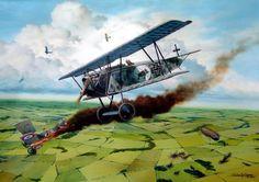Fokker DVII of Jasta 4