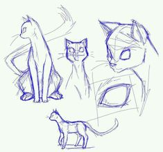 Animal Sketches, Art Drawings Sketches, Animal Drawings, Funny Drawings, Cartoon Drawings, Pencil Drawings, Cat Anatomy, Anatomy Drawing, Cat Sketch