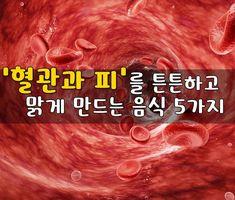 '혈관과 피'를 튼튼하고 맑게 만드는 음식 5가지 혈관이 빨리 노화되는것을 방지하려면 혈관을 깨끗하게 해주고 보호해주는 음식을 많이 먹어야 하는데요, 연구결과 아래의 5가지 음식이 혈관을 깨끗하게해주고 혈관 막힘을 예방해주며, 혈관의 굳어지는것을 예방해주는 특유의 효능이 있습니다. 1. 혈액의 응고를 막는 '당근' 당근에 들어 있는 비타민 C, 카로틴, 비타민 E가 혈관이나 조직을 산화시키는 활성 산소의 활동을.. Drying Herbs, Natural Medicine, Health Tips, Health Foods, A Food, Natural Remedies, Healthy Lifestyle, Health Fitness, Knowledge