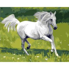 Home Decor Animals Hippie oil painting Horse Art Print Poster Wall Pictures Canvas Painting No Framed painting by numbers k39 $13.6