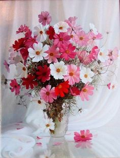 By Éphémeride seasonal calender Cosmos Flowers, My Flower, Flower Vases, Pretty Flowers, Flower Art, Beautiful Flower Arrangements, Floral Arrangements, Floral Photography, Flower Wallpaper