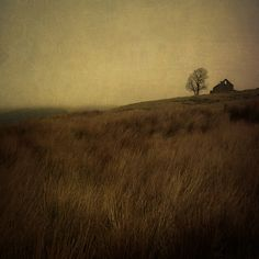 the landscape i imagined resembles this, a desolate place far from much civilization.