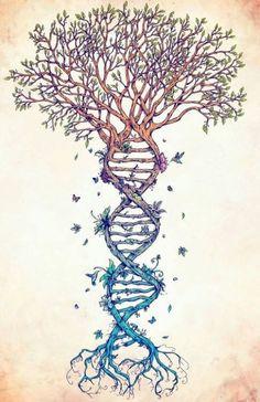 DNA Roots