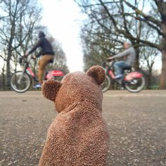 Watching the Boris bikes whizz by outside Buckingham Palace  #wallacethelostbear #adventuresofwallace #lostbear #london #westminster #buckinghampalace #thequeen #queenelizabeth #queenie #borisbikes #themall #trees #life #content #toyphotography #toytravel #photooftheday #follow #whereswallace #beautiful #wanderlust #thisislondon #visitlondon #bike #bicycle #exercise by wallace.the.lost.bear