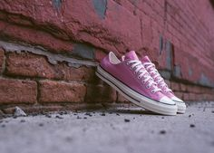 a9a2c1da609 CONVERSE CHUCK TAYLOR 1970S OX - CHATEAU ROSE PINK TRAINERS IN ALL SIZES