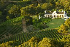 There's more than one way to experience the world-class wine farms of Franschhoek, Stellenbosch, Constantia and Hermanus. Cape Dutch, Famous Wines, Dutch House, Day Tours, Cape Town, South Africa, National Parks, World, Wineries