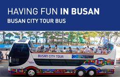 Dynamic Busan Tour