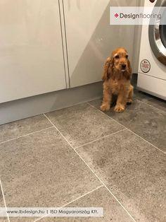 #designflooring #interior #design #floor #flooring #home #dog #idea #ibdesign