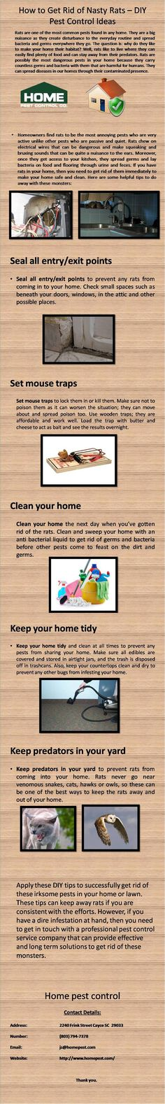 Rats are one of the dangerous pest we face every day in our life. Here are some tips by which you can get rid from these dangerous diseases spreading monsters. For more information visit www.homepest.com/