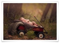 Lisa Holloway of LJHolloway Photography photographs a sweet newborn baby boy outdoors in the forest near Las Vegas.
