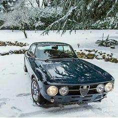 Alfa Romeo 2000 GTV Owner: @cliff_brunk #DriveVintage
