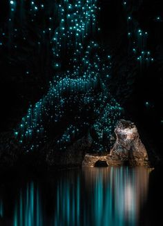 Photograph of glow worms in an Australian cave.