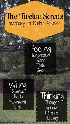 Remembering & Forgetting; and the Twelve Senses according to Rudolf Steiner. We want to nourish all of these senses as we make our Waldorf homeschooling plans.