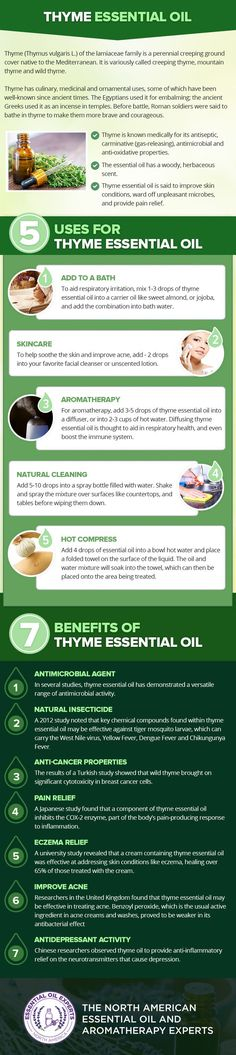 Thyme Essential Oil Uses & Benefits
