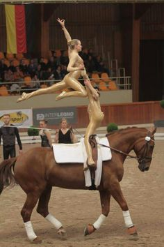 Vaulting Beautiful Horse Pictures, Beautiful Horses, Woman Riding Horse, Trick Riding, Horse Facts, Western Pleasure, Horse Tips, Horse Photos, Pretty Horses