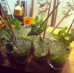 In the mojito forest