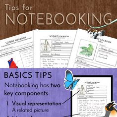 Notebooking Tips {Infograph} | Sassafras Science