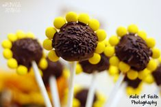 Sunflower Brownie Pops!