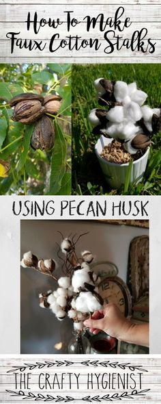 How to Make your very own cotton stalks using Pecan Husk cotton stalks | cotton stalks decor | cotton stalks ideas | cotton stalks arrangement | cotton stalks diy pecan pie | pecan pie cobbler | pecan pie bars | pecan pie muffins | pecan cobbler | Pecan C