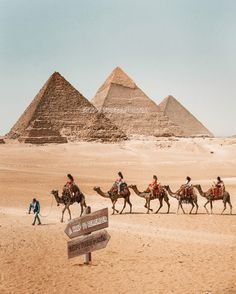 Book now 7 days Cairo and Hurghada holiday to enjoy visiting ancient Egypt attractions in Cairo, then move to Hurghada to enjoy Red Sea holidays. Pyramids Egypt, Cairo Egypt, Places To Travel, Places To Visit, Modern Egypt, Egypt Culture, Visit Egypt, Egypt Travel, Destinations