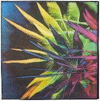 Fireworks Flowers #4 - Charlotte Ziebarth