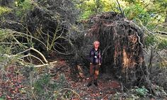 Archaeologist David Jacques next to the stone age 'eco home' in Blick Mead near Stonehenge. Stonehenge, Archaeology News, Archaeological Discoveries, Hunter Gatherer, Ancient Mysteries, Eco Friendly House, Autumn Trees, Ancient History, European History