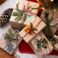 Cute gift wrapping...brown parcel paper+nature-made embellishments=eco-wrap