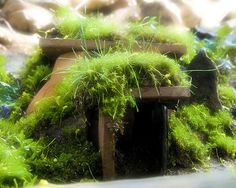 The Fairy House (2) by Cayusa, via Flickr