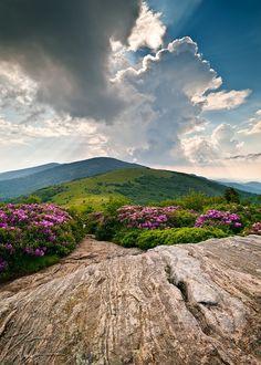 The #Appalachian Trail over Roan Mountain, North Carolina   #hiking #camping