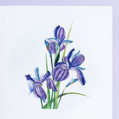 Beautiful Iris, by Quilling Card