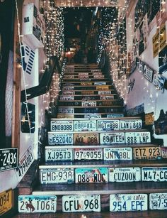 License plates from all over the states
