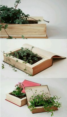 book plant bed! #craft #diy #plants