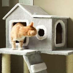 Cat Tree Condo, Cat Tree House, Condo Furniture, Furniture Deals, Modern Cat Furniture, Sisal, Cleaning Litter Box, Furniture Scratches, Scratching Post
