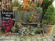 Alte Schuhe - Recycelt? | Schuhe | Pinterest | Fotos Alte Schuhe Bepflanzen Originelle Pflanzgefase Garten