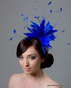 191659b276680 19 Best Blue Fascinator images