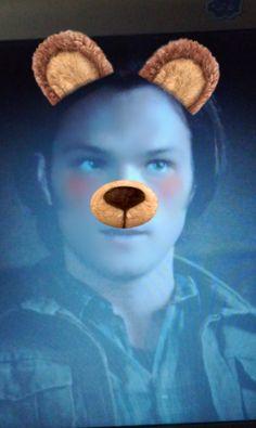 sammy the pooh