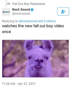 FALL OUT BOY EVEN RETWEETED IT I'M SO DONE WITH THIS BAND