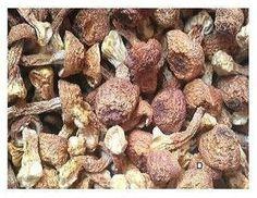 Getrocknete agaricus blazei Pilze 1500 Gramm JOHNLEEMUSHROOM http://www.amazon.de/dp/B00VJDKB8S/ref=cm_sw_r_pi_dp_XrUxwb04D3D0D