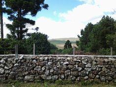 Fazenda Santa Helena...linda !!