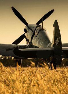 Aviation Pin Ups Ww2 Aircraft, Fighter Aircraft, Fighter Jets, Military Jets, Military Aircraft, Avion Jet, Photo Avion, Supermarine Spitfire, Ww2 Planes