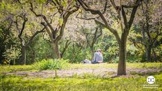 Digital Product Thumbnail - Girl between Almond Trees in Spring in Madrid Spain Spring Pictures, Spring Photography, Travel Images, Madrid, Almond, Spain, Bloom, Trees, Digital