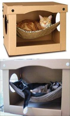 La solide boîte en carton renferme un hamac confortable pour se. The Effective Pictures We Offer You About fabric Cat Toys A quality picture can tell you Cardboard Cat House, Cardboard Boxes, Cat House Diy, Diy Cat Toys, Homemade Cat Toys, Cat Hammock, Cat Tent, Cat Hacks, Cat Room