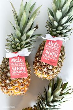 We're channeling the spirit of Hawaii today, with a pineapple gift idea for neighbors and friends that is both easy and adorable. I'm Bettijo from Paging Supermom here to share a super-easy Christmas Neighbor Christmas Gifts, Merry Christmas To You, Christmas Gifts For Friends, Neighbor Gifts, Santa Gifts, Christmas Gift Wrapping, Christmas Tag, Christmas Ideas, Christmas Stuff