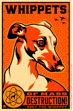 WMDs- Whippets of Mass Destruction -  Propaganda for Whippet World Domination (from Obey the Purebreed Cafe press store)