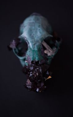 Tyler Thrasher collects found objects and deceased creatures, takes them home and grows delicate, gorgeous crystal clusters on them. His unique talent...